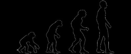 evolution-2780651_960_720