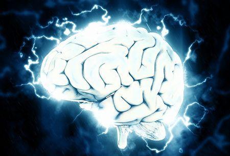 脳だけで何年生きられるか
