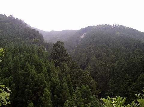東濃檜の山々