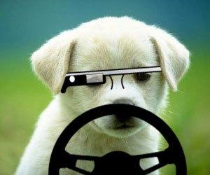 グーグル・グラス装着での自動車運転、裁判所で違反切符無効に