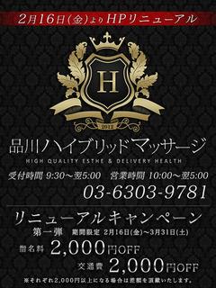 品川HM_媒体_480-640