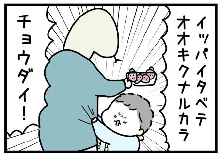 IMG_0955