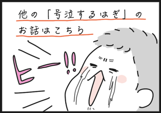 gokyu