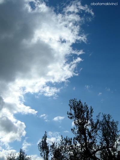 Olivo e Nuvola
