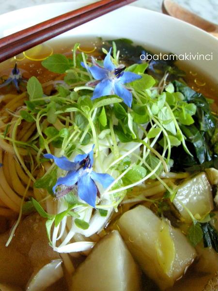 Soba-Spaghetti Integrale con Germogli di SHISO