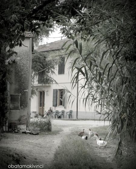 Casa di Contadino