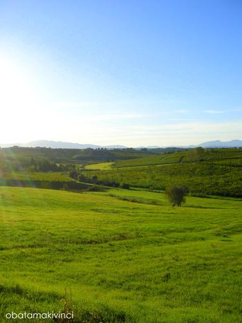 Valle di Collina