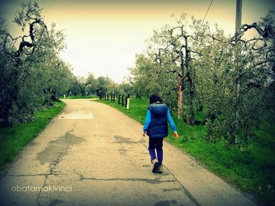 Passeggiata a Faltognano tanti Olivi