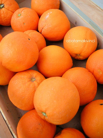 Arancia Siciliana Bio