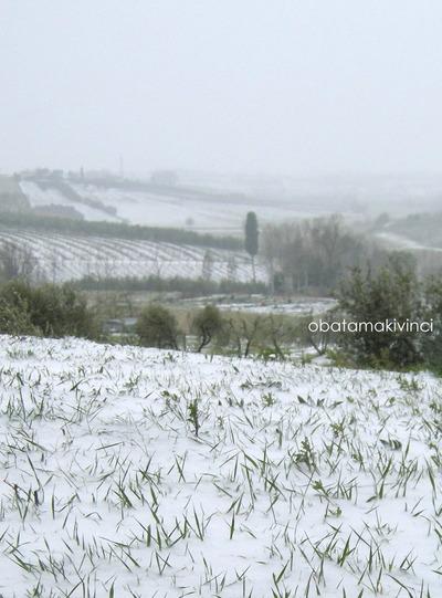 Nevicato