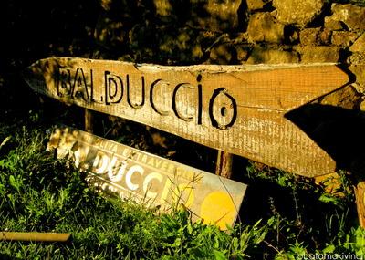 Balduccio-cartella
