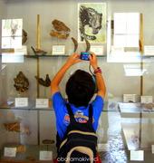 Visita Paleontologia foto