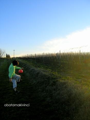 Passeggiata con pallone