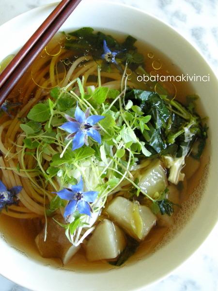 Soba-Spaghetti Integrale con Germogli di SHISO e bastoncini