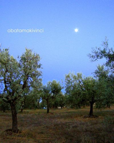 Luna e Oliveto