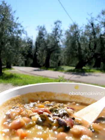 Pranzo Vegan nel Oliveto di Bianconi