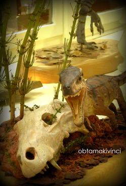 Paleontologia Fossili 2