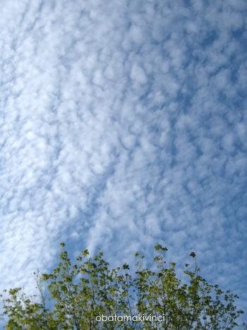 cielo di fine agosto