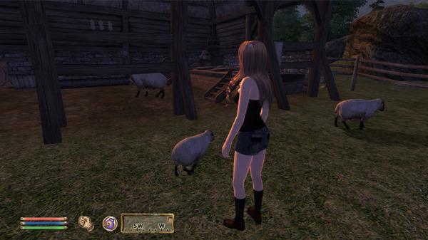 Oblivion 2011-05-23 14-30-12-06
