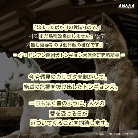 ダウンロード (14) (1)