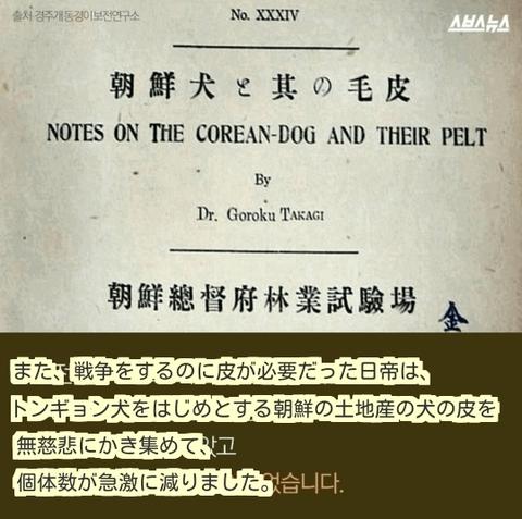 ダウンロード (9) (1)