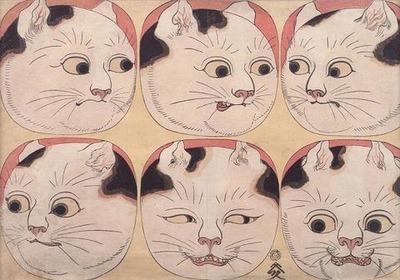 猫の百面相