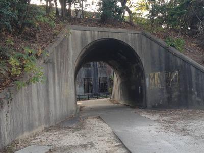 発電所跡へのトンネル