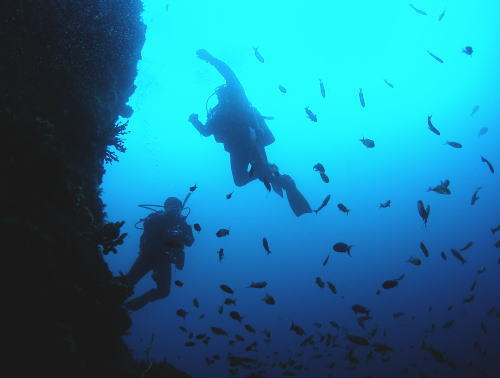 diver_b