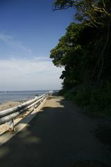 natsuiro_road
