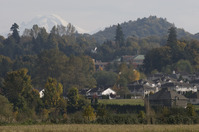Abbotsford (6)