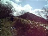 09青笹2009.2.11