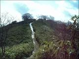16青笹2009.2.11