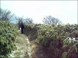 15青笹2009.2.11