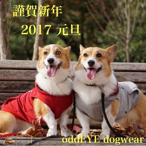 2016-12-31-01-07-46
