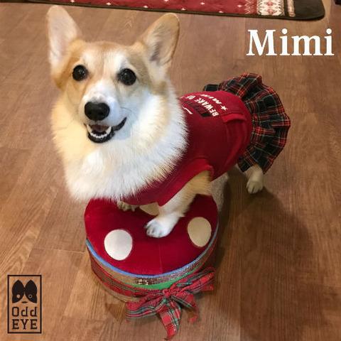 image1_mimi