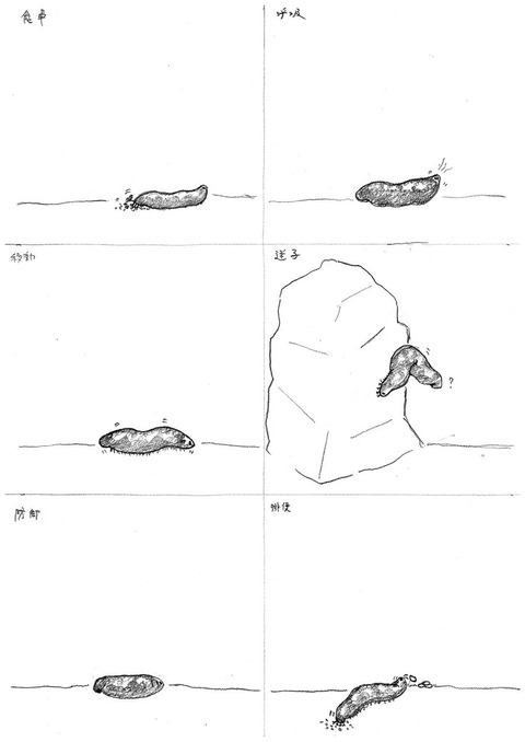 watashinoaisuruikimonoten2019-2