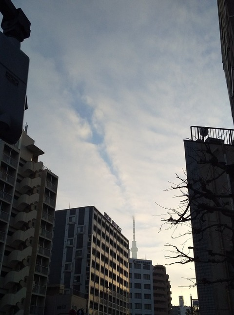 sukaitsuri-kumowokirisaku2020-1