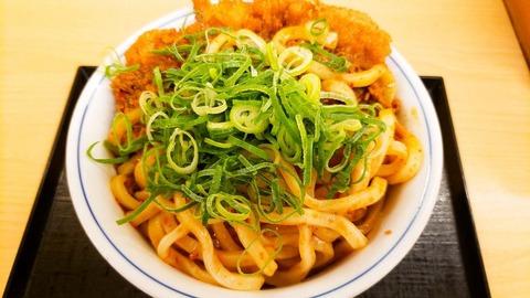 kare-udon-katsudon-repo2