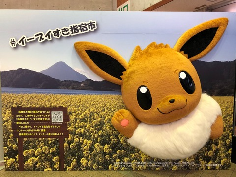 ibusuki-mofumofu2019-11-21-2