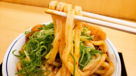 kare-udon-katsudon-repo