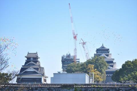 kumamoto-syachihoko2019-3