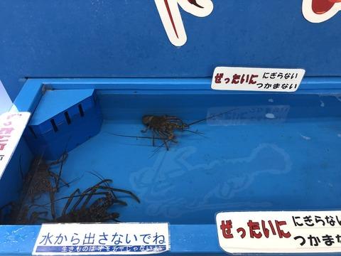 koukyuusozai-tacchingu-3