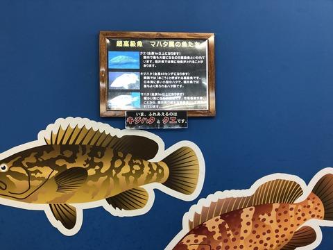 koukyuusozai-tacchingu-4