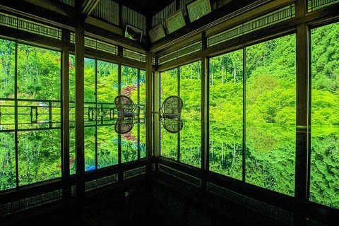 kankyou-geijyutsunomori
