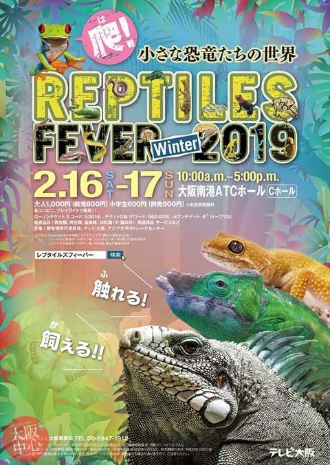 reputaizufi-ba-2019