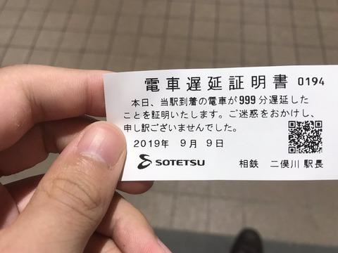 chiensyoumei-max2019