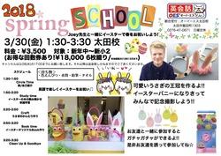 Spring school 2018ポスター