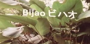 20161005コロンビア大使館ビハオの葉