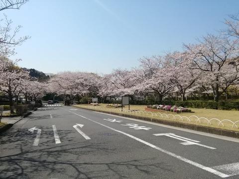 20190406鎌倉霊園入り口