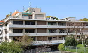 office-konoha